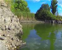 Дневник рыболова — Рыбалка на карпа на реке Рось