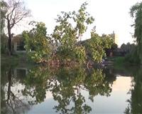 Клуб рыбаков — Летняя рыбалка на поплавочную удочку. Полезные советы