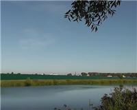 Рыбалка с Пашком — Река Пахра район Ям