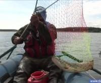 Видео «Диалоги о рыбалке»— Можайское водохранилище. Ловля щуки на кружки