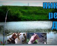 Короткая рыбалка на пикер. Река Дон