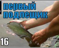 Первый подлещик на Дону 2016