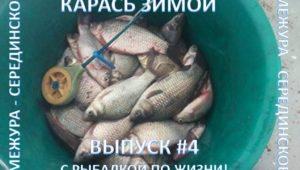 Карась зимой — С рыбалкой по жизни