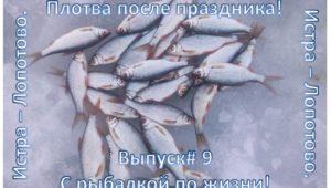 Плотва после праздника — С рыбалкой по жизни