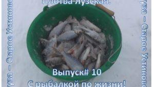 Плотва Яузская - С рыбалкой по жизни