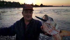 Поклевка черноморского лаврака (сибаса). Абхазия — Рыболовный дневник