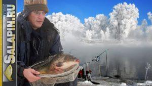 Ловля карася и сазана фидером в экстремальный мороз - Салапин