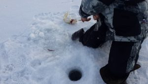 Жерлицы и мормышка на Вышневолоцком водохранилище - Рыбалка 69
