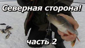 Северная сторона. Часть 2 — ПашАсУралмашА: Зима 2016 — 2017