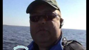 Весьегонская щука — Рыбалка 69