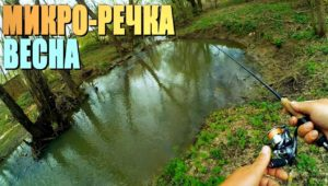 Динамичная ловля крупной уклейки на весенней реке