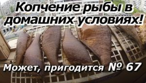 Копчение рыбы в домашних условиях - ПашАсУралмашА: — Может пригодится! (67 выпуск)