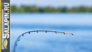 Ловля на фидер: подготовка к рыбалке - Салапин