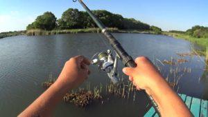 Первая рыбалка на поплавок с перерывом в 15 лет - Дневник рыболова
