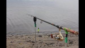 Рыбалка на кормаки — Дневник рыболова