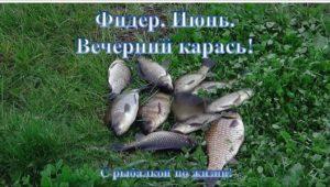 Вечерний карась в июне — С рыбалкой по жизни