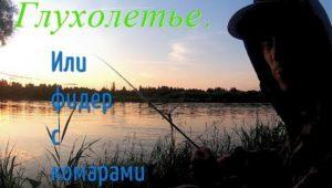 Глухолетье или фидер с комарами — Болен Рыбалкой