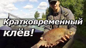 Кратковременный клёв - ПашАсУралмашА: Летний сезон 2017