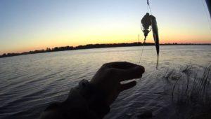 Битва прикормок для рыбалки. Часть 2 — Дневник рыболова