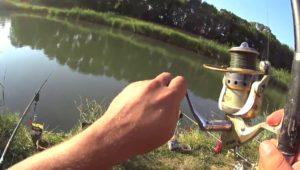 Битва прикормок для рыбалки. Часть 1 — Дневник рыболова