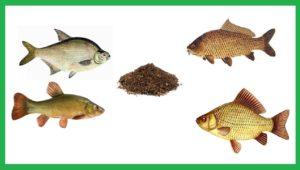 Лучшая прикормка для рыбалки