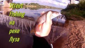 Street fishing на реке Луза - Болен Рыбалкой