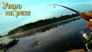 Тёплое утро на реке - поиск белого хищника