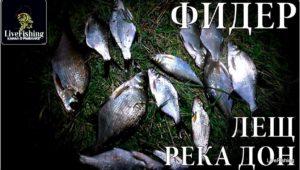 Рыбалка на фидер. Лещ. Река Дон