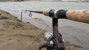 Рыбалка с фидером на Истринское водохранилище