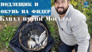 Фидер на канале им Москвы осенью - Рыболовный дневник