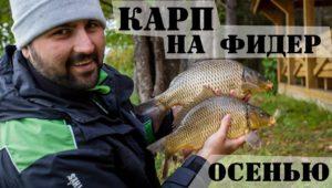 Ловля карпа на фидер поздней осенью — Рыболовный дневник