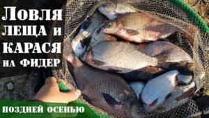 Ловля леща и карася на фидер осенью — Рыболовный дневник
