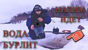 Налим идет - Болен рыбалкой