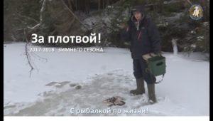 За плотвой!  — С рыбалкой по жизни