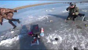 Хитрая зимняя плотва и крупный пескарь — Дневник рыболова