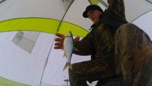 Скромная рыбалка — Мир мужчин