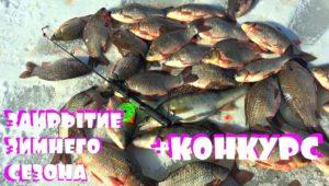 Закрытие зимнего сезона по карасю — Клуб рыбаков