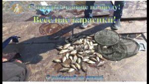 Весёлые карасики — С рыбалкой по жизни!