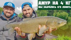 Бонус от водоема Савельево. Амур на 4 кг — Рыболовный дневник