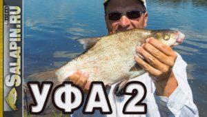 Рыбалка фидером на реке Белая. День второй - Салапин