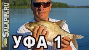 Рыбалка фидером на реке Белая - Салапин