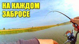 Рыбалка на пилькер