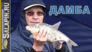Рыбалка с фидером на дамбе Финского залива - Салапин