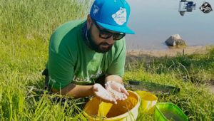 Как работать с зерновыми смесями в фидерной ловле — Рыболовный дневник