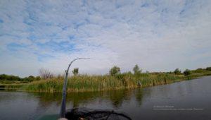 Осенняя рыбалка на щуку - Рыбалка 68