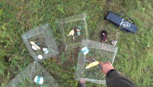 Охота на раков. Часть 2 — Дневник рыболова