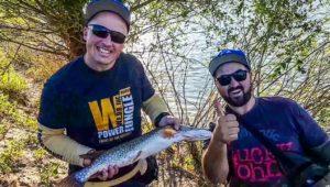 Фидермены стали спиннингистами — Рыболовный дневник