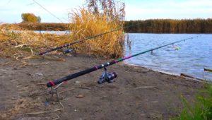 Ловля карася поздней осенью в ноябре — Клуб рыбаков