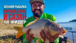 Ловля на фидер крупного карася и сазана на дикой реке — Рыболовный дневник