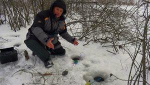 Зимняя рыбалка в дремучем коряжнике на болоте — Клуб рыбаков